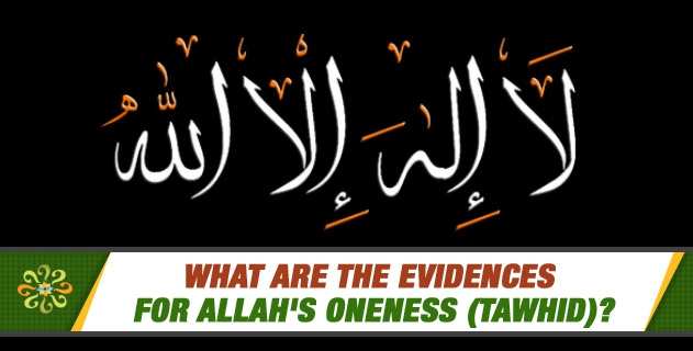 What are the evidences for Allah's oneness (Tawhid)?