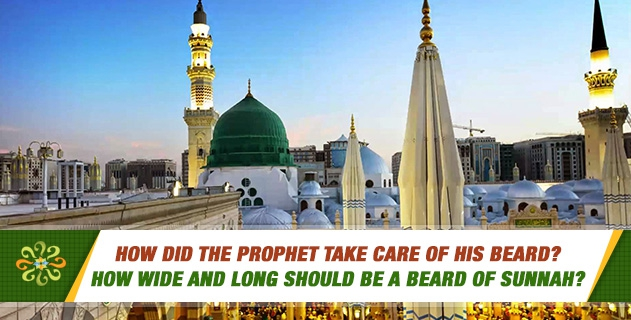 How did the Prophet take care of his beard?  How wide and long should be a beard of Sunnah?