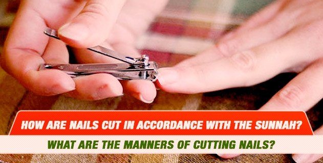 How are nails cut in accordance with the Sunnah? What are the