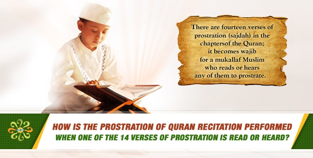 How is the prostration of Quran recitation (sajdah at-tilawah) performed when a verse of prostration (sajdah) is read? Is it permissible to delay this prostration?