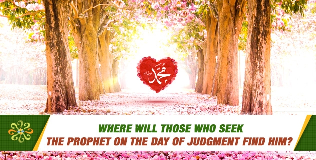 Where will those who seek the Prophet on the Day of Judgment find him?