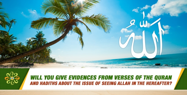 Will you give evidences from verses of the Quran and hadiths about the issue of seeing Allah in the hereafter?