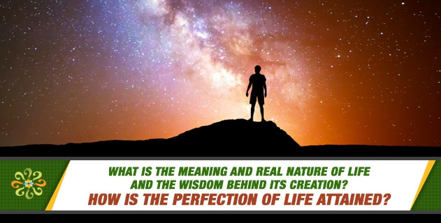 What is the meaning and real nature of life and the wisdom behind its creation? How is the perfection of life attained?
