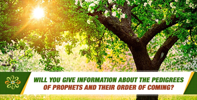Will you give information about the pedigrees of prophets and their order of coming?